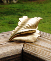Beautiful Crown Trifari© Conk Shell Brooch - $175.00