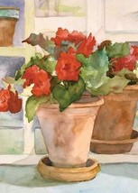 """Begonias Brilliance House Size (28"""" x 40"""" Approx)  Flag TOL 109135 - $15.99"""