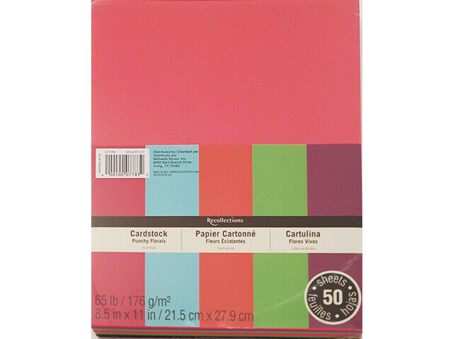 """Recollections Cardstock Punch Florals 8.5x11"""" #237294"""