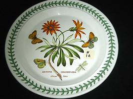 """Portmeirion Botanic Garden Dinner Plate African Daisy 10 1/2"""" #1A - $34.99"""