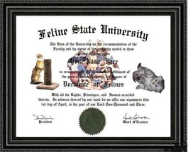 Cat Lover's Diploma / Degree Custom made & Designed for YOU Gag Gift  UN... - $9.74
