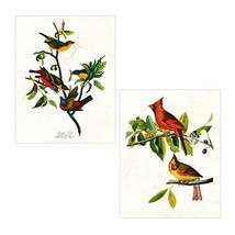 Set of 2 Vintage Audubon Bird Prints - Painted Finch and Cardinal Grosbe... - $32.70