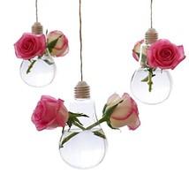 Ivolador 3PCS Lightbulb Glass Hanging Planter Vase Terrarium Container H... - $12.98