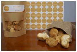 Greek Wild Lion's Mane Hericium Erinaceus Dried Whole Mushrooms 600gr / 21.16oz - $95.02