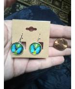 Wings Of Blue Earrings green silver - €15,85 EUR