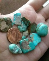 P 1 Arizona Nevada Turquoise pieces lot polished - $25.00