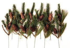 CraftMore Set of 12 Wild Wood Pine Picks image 2