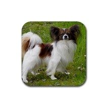 Cute Papillon Puppy Puppies Dog Pet Animal (Square) Rubber Coaster - $2.99