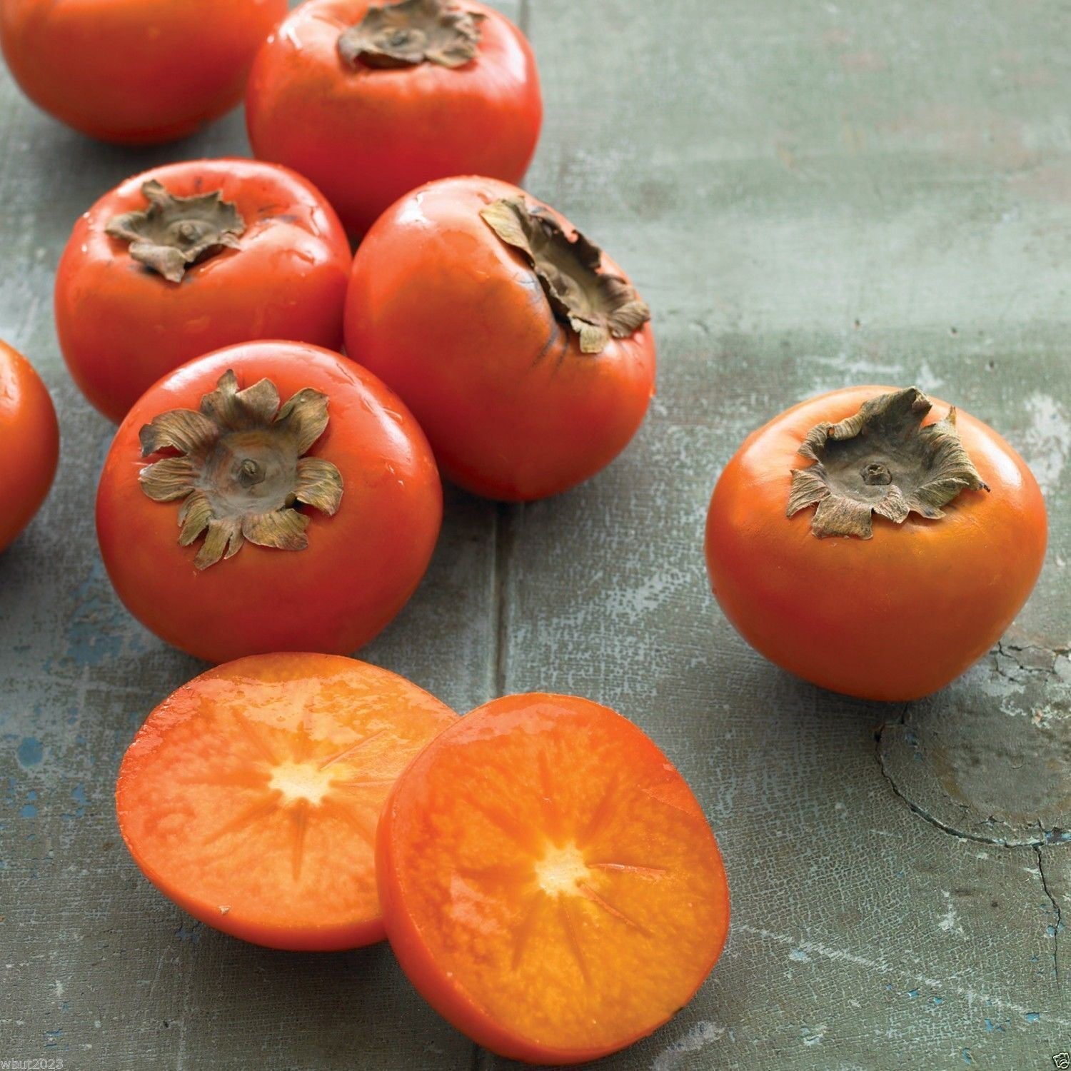 SHIPPED From US_American Persimmon, Diospyros virginiana Seeds 30 SEEDS-WB