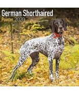 German Shorthair Pointer Calendar 2020 - Dog Breed Calendar - Wall Calen... - $15.61