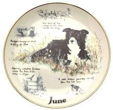 Danbury Mint Border Collie plate June by Paul Doyle CP2169 - $38.21