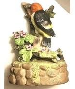 "J. Byron Royal Crown Porcelain Bird Woodpecker Music Box ""Somewhere My L... - $6.19"