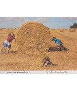 Harvest Farming Time Countesthorpe Leicester Children Hay Straw Rare Pos... - $7.99
