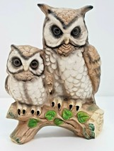 Owl Pair Perched Branch Leaves Mom Dad Baby Mother Father Owlet Bird Col... - $14.84