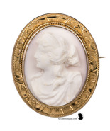 10 kt gold. Early 1900's vintage Queen Conch shell cameo of Hera in high... - $313.00
