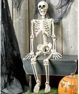 "Trick or Treat 35"" Halloween Scary Skeleton - $30.00"