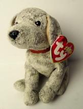 Beanie Babies Dog Trick May 14 2000 Birthday Now Retired - $8.86