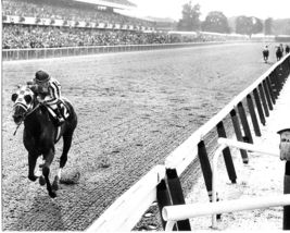 Secretariat Belmont Stakes 1973 Triple Crown Vintage 24X36 BW Memorabilia Photo - $45.95