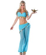 Sexy Genie Halloween Costume  - $21.53