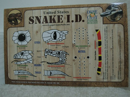 Snake Identification Guide Snake I. D. Do and Don't Do Herpetology Chart... - $4.94