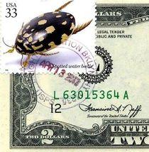 MONEY US $2 DOLLARS 1976 SAN FRANCISCO STAMP CANCEL SPOTTED WATER BEETLE GEM UNC image 3