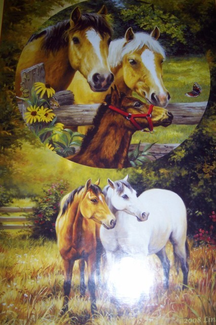 Country Horses Family Jigsaw Puzzle 2 Puzzles in 1 NEW