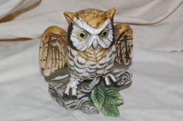Homco RARE Owl Figurine C-3717 Home Interiors - $9.99