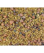 6 Variety High Nutrition 3 Part Salad Mix Sprouting Fresh Seeds #TLM1 - $18.99+