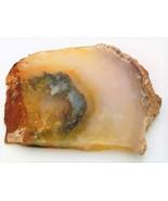 Agate 1 Gemstone Slab Cabbing Rough - $7.88