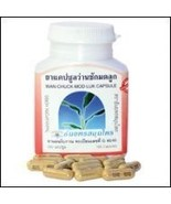 1X Wan Chuck Mod Luk, Curcuma Xanthorrhiza, Wild Ginger 100 capsules Bra... - $12.99