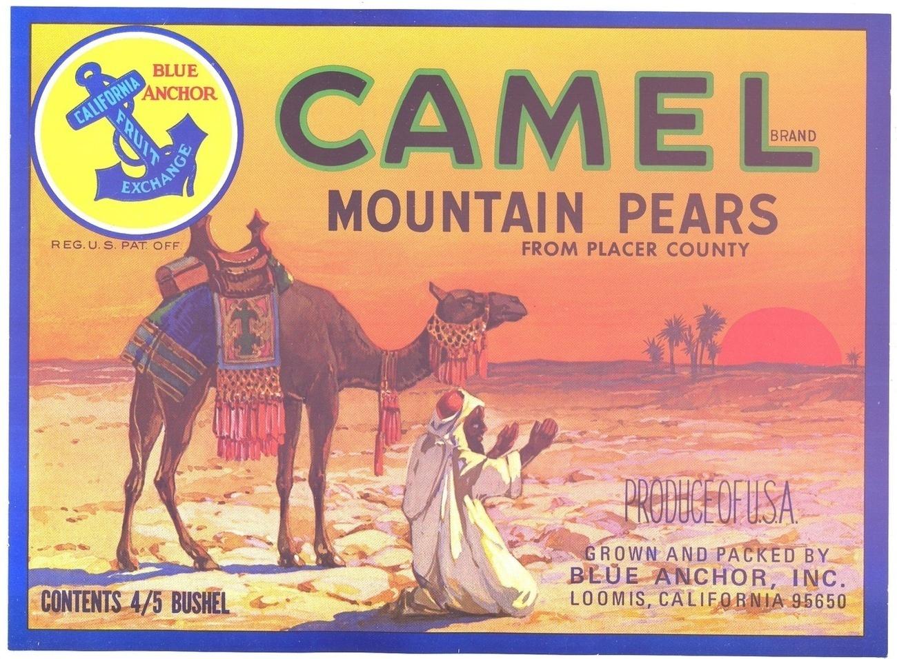 Camellabel