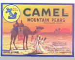 Camellabel thumb155 crop