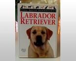 Labrador retriever thumb155 crop