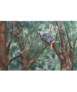 "Exotic Original Watercolor by Ana Sharma, ""Brazilian Saguil"",  14 x 22 i... - $500.00"