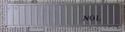 10881619 tp