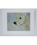 Golden Retriever Dog Art Note Cards By Cori Solomon - $12.50