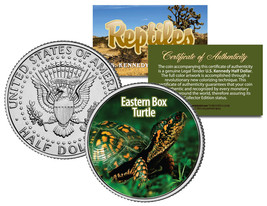 EASTERN BOX TURTLE * Collectible Reptiles * JFK Half Dollar US Colorized... - $8.56