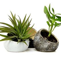 3-Pcs Decorative Hand Made Ceramic Air Plant pottery Koski Small Oval Ti... - $44.01 CAD