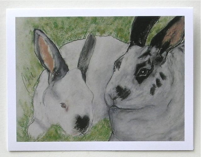 Bunny Rabbit Animal Art Note Cards Solomon