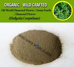 POWDER Old World Diamond-Flower Grass Pearls Oldenlandia Hedyotis Corymbosa - $7.85+