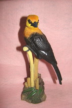 Beautiful Big Black, Orange and Yellow Bird on Tree Branch, Collectible ... - $39.59