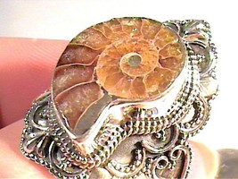 Natural FOSSIL AMMONITE RING 925 sterling silver 10 bold elegant unisex ... - £50.18 GBP