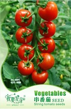25 Seed Red Truss Tomato Plant Seeds Non-gmo Heirloom, DIY Healthy Veget... - $8.99