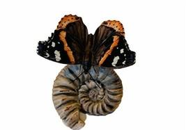 Goebel Hummel Butterfly Figurine Germany Butterflies Moth 35008 Red Admi... - $94.05