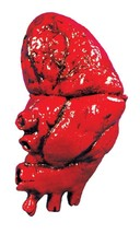 Bloody Heart Latex Prop Body Parts Gross Gory Creepy Halloween Realistic... - $32.99