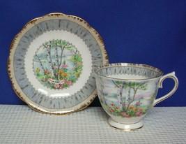 SILVER BIRCH Royal Albert COUNTESS FOOTED TEA CUP & SAUCER Bone China En... - $14.01