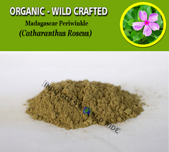 POWDER Madagascar Periwinkle Catharanthus Roseus Organic Wild Crafted Herbs - $16.40+