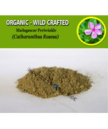 POWDER Madagascar Periwinkle Catharanthus Roseus Organic Wild Crafted Herbs - $7.85+