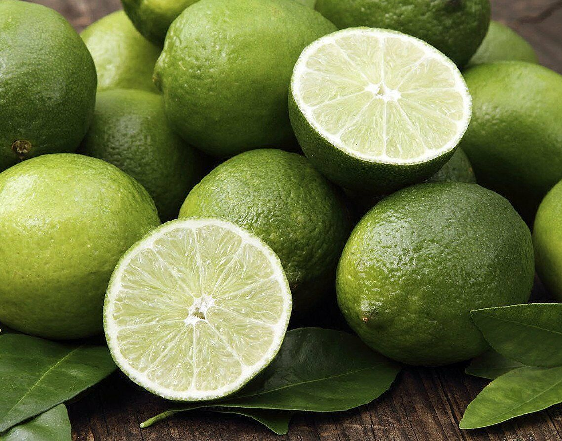 "Primary image for 8""Pot Key Lime Tree Fruiting Size/Branched Plant Make Outdoor Garden"