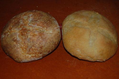 S0URD0UGH STARTER VERIFIED 150+yrs california gold rush country flour